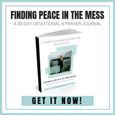 Finding Peace in the mess 30 Day Devotional and Prayer Journal. A 30 Day journey to unshakeable hope in the valleys of life. #footprintsofinspiration #prayerjournal #devotional #scripture #hardtimes #hope #devo