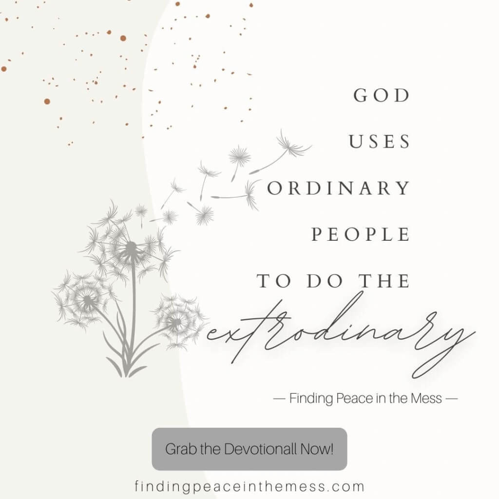 Finding Peace in the Mess 30-Day Devotional & Prayer Journal